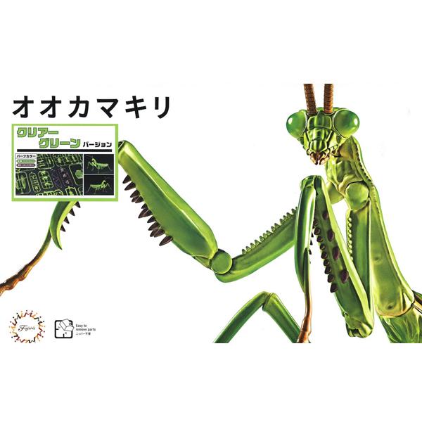자유연구 시리즈 생물편 - 거대 사마귀(클리어 그린) [6월입고완료] [4968728171067]