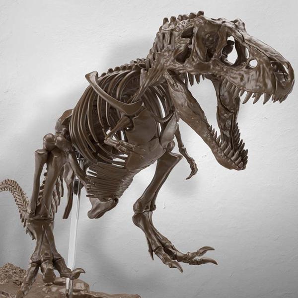 1/32 Imaginary Skeleton 티라노사우루스 [7월발매/8월입고예정][4573102618009]